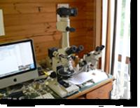 Petrographic assessment
