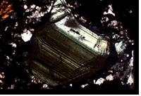 Polished sphalerite under microscope