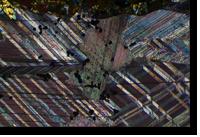 Twinned recrystallized calcite